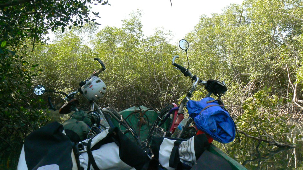 The bikes take a boat trip through the mangroves.