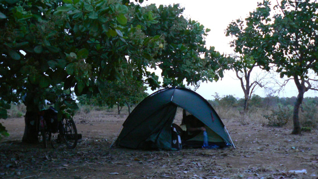 Sneaky camping amongst someone's cashew trees.